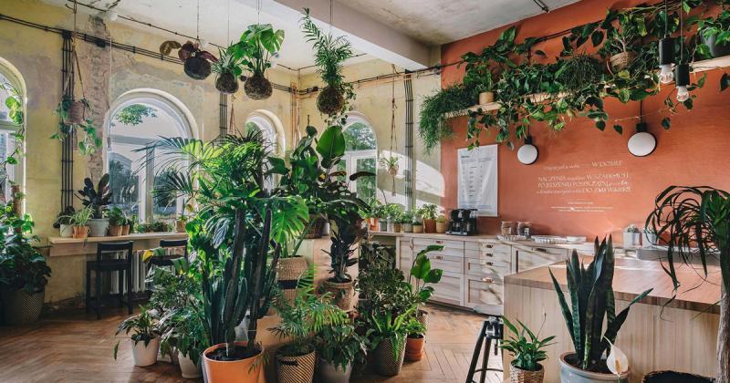 House of Tomorrow: IKEA biến đổi căn nhà thành những thực thể sống cùng phát triển với con người