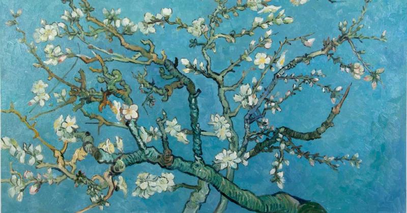 Nỗi ám ảnh bất ngờ và sâu đậm của nghệ thuật Nhật Bản trong việc định hình nên Van Gogh