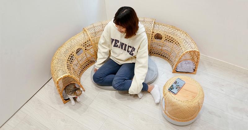 Kết hợp không gian chơi cho mèo vào sofa với ý tưởng 'tương tác thụ động'
