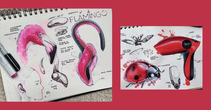 Cuốn sổ phác họa các sản phẩm 'sang xịn mịn' lấy cảm hứng từ động vật