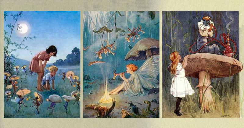 Nấm, Thế giới Cổ tích và Alice ở Xứ sở Thần tiên (phần 2): Hành trình trở thành biểu tượng của nấm