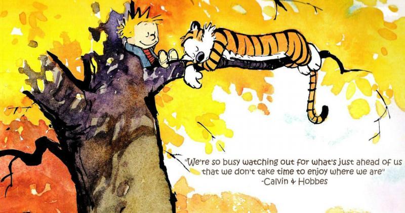 Bạn sáng tạo vì đâu? Như 'Garfield' hay 'Calvin and Hobbes'?