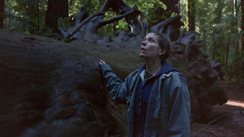 Nomadland - Lang thang để tìm lại điều đã mất và những sự thật thú vị về bộ phim