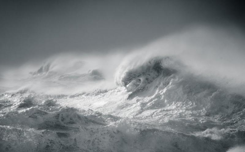 Đắm chìm trong những bức ảnh thể hiện tình yêu đại dương của nghệ sĩ Rachael Talibart