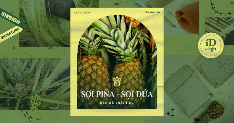|Bản đồ chất liệu| Sợi Piña - Chất liệu của giới thượng lưu Philippines